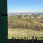 http://www.nadiasaglietti.com/files/gimgs/th-9_crs5.jpg